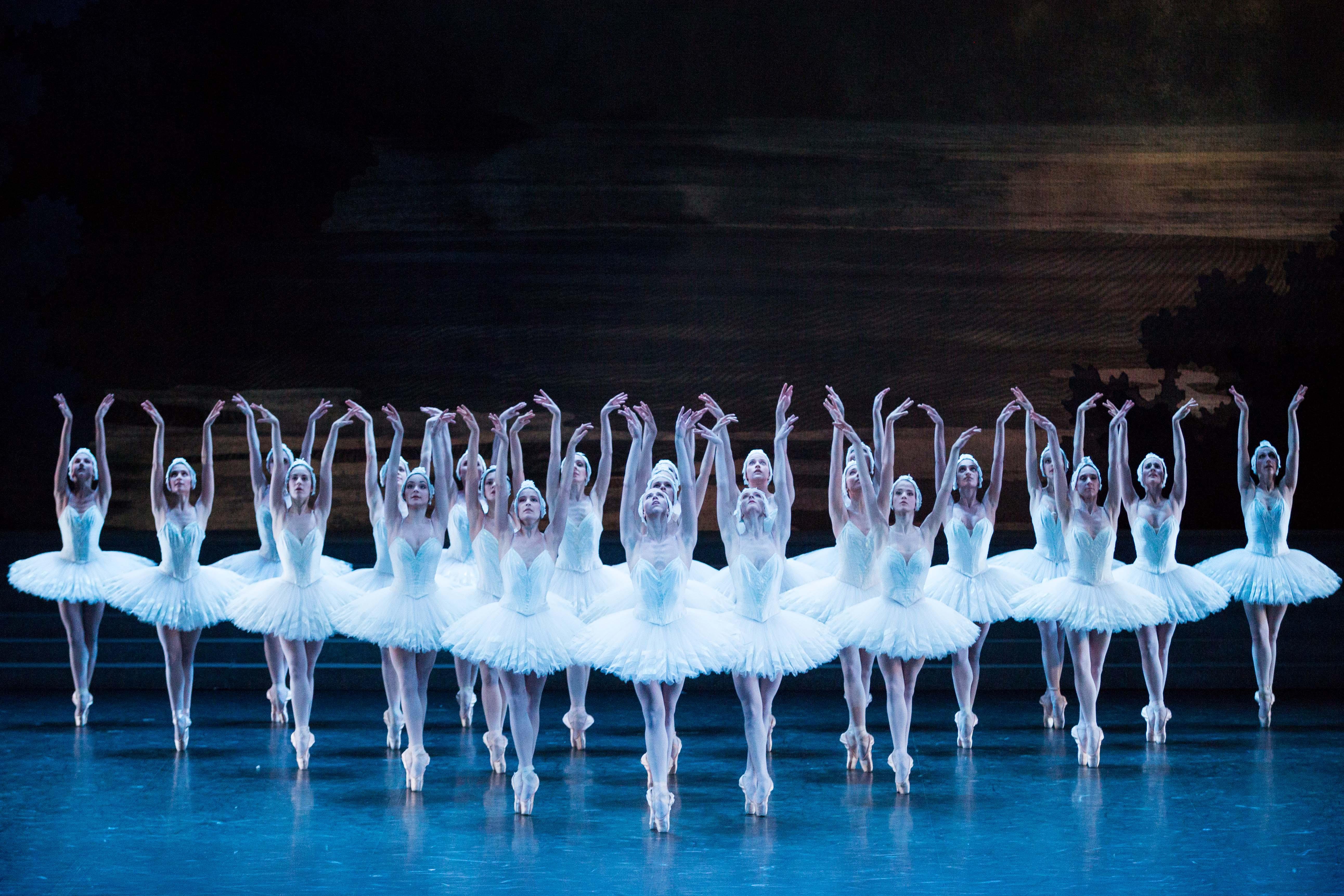 балет лебединое озеро в картинках формируются галлы, внутри